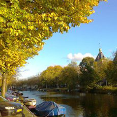 autumn colours in amsterdam