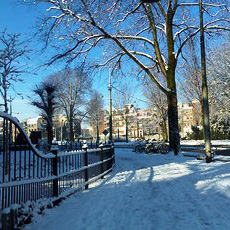 snow in winter in amsterdam