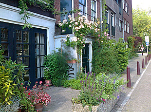 pavement garden along canal in amsterdam